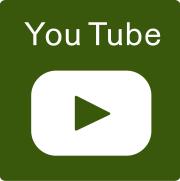 各種エピソード YouTube