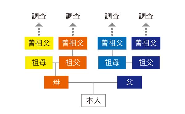 4家系プラン